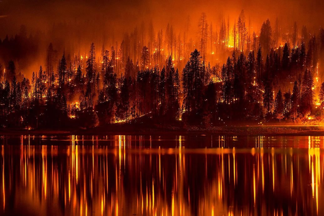 Detecting and Preventing Wildfire Threats